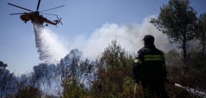 Ναύπακτος: Στη θάλασσα έφτασε η φωτιά από τα Μαλάματα (ΔΕΙΤΕ ΒΙΝΤΕΟ)