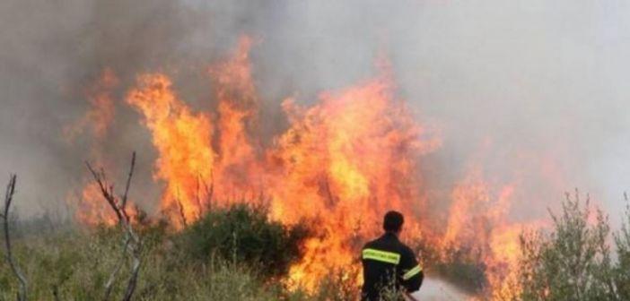Πυρκαγιά σε δασική έκταση στο Στρογγυλοβούνι Ξηρομέρου – Συνδρομή και από αέρος