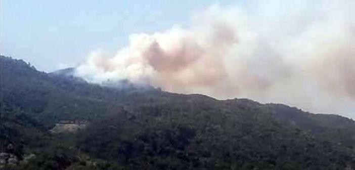Υπό έλεγχο η φωτιά στη Σκουτεσιάδα (ΔΕΙΤΕ ΦΩΤΟ)
