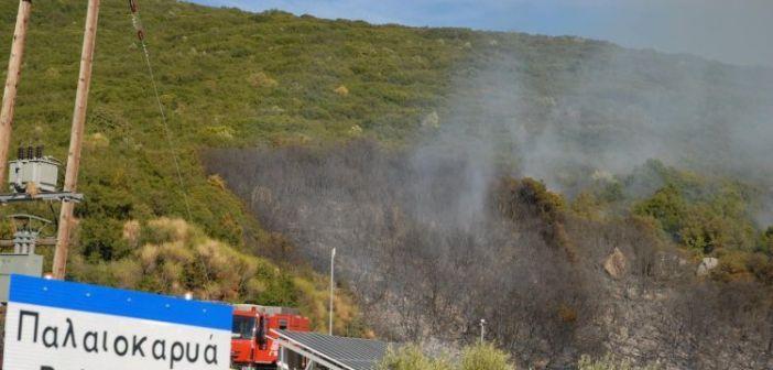 Αγρίνιο: Πυρκαγιά στην περιοχή της Παλαιοκαρυάς (ΔΕΙΤΕ ΦΩΤΟ)