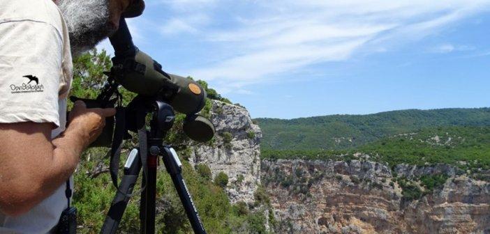 Στελέχη της Ορνιθολογικής Εταιρείας στις περιοχές της Κλεισούρας και των Ακαρνανικών Ορέων (ΦΩΤΟ)