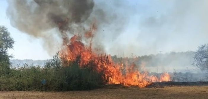 Συναγερμός στην Π.Υ. Αγρινίου για εστίες φωτιάς στην περιοχή της Λεπενούς