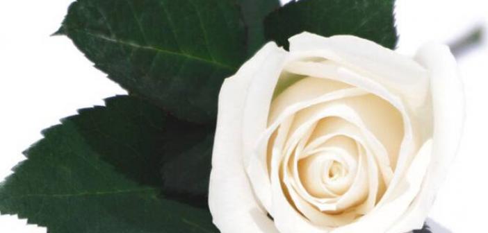 Συλλυπητήρια του Ξενώνα Φιλοξενίας Γυναικών στην Αθανασία Δημητρίου για το θάνατο του γιου της