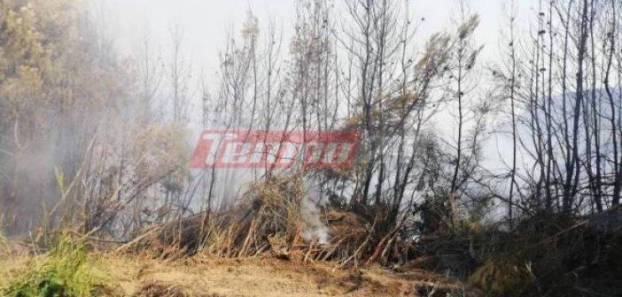 Συνεχίζει να καίει η φωτιά στην Ηλεία για τρίτη ημέρα – Βρίσκεται σε ύφεση – Παραμένουν δυνάμεις της Πυροσβεστικής