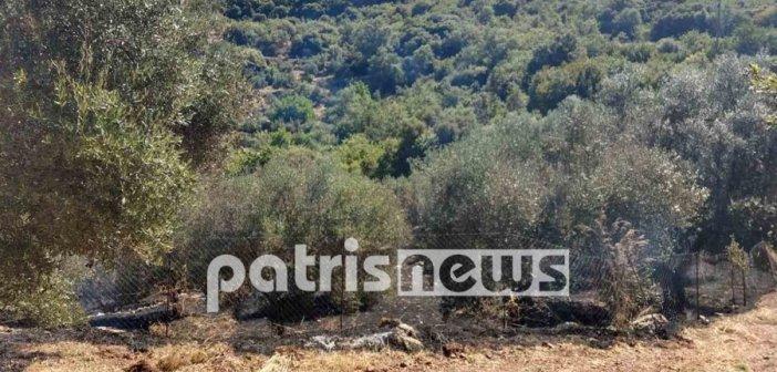 Δυτική Ελλάδα: Νεκρός 55χρονος άνδρας στην Παλαιά Φιγαλεία