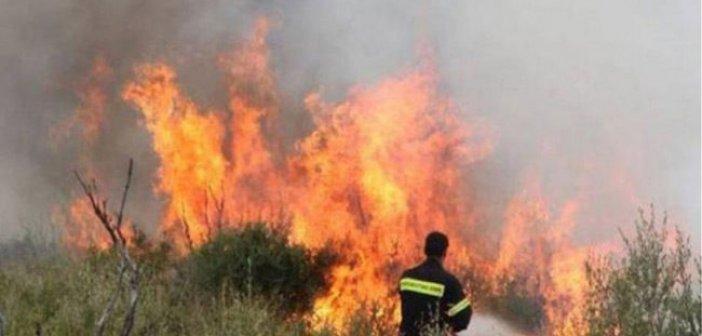 Μεγάλη πυρκαγιά στο Ξηρόμερο