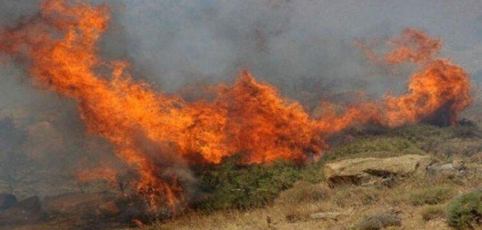 Ευχαριστήρια ανακοίνωση για την αντιμετώπιση της πυρκαγιάς στη θέση «Άγιος Γεώργιος» της Κοινότητας Τρύφου.