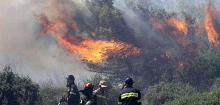 Δυτική Ελλάδα: Με εντολή Χρυσοχοϊδη ξεκινούν κατεπείγουσες έρευνες για τις μεγάλες φωτιές στην περιοχή
