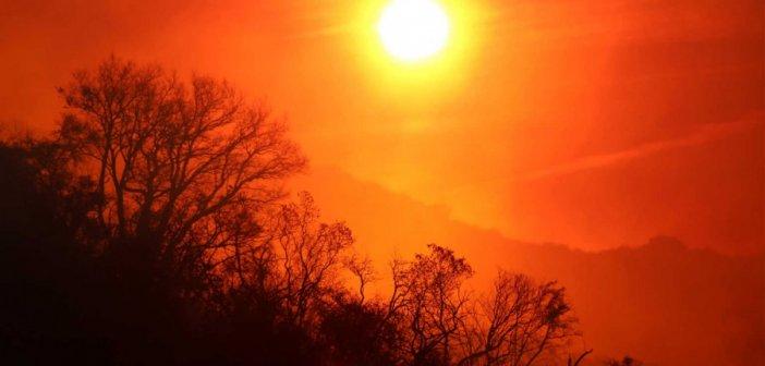 Γαβαλού Αιτωλοακαρνανίας: Από τις μέγιστες θερμοκρασίες για άλλη μία φορά (ΦΩΤΟ)