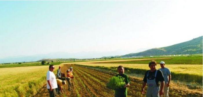 Δυτική Ελλάδα: Χρηματοδοτούνται με 5,2 εκατ. ευρώ 375 δικαιούχοι για την ανάπτυξη μικρών γεωργικών εκμεταλλεύσεων