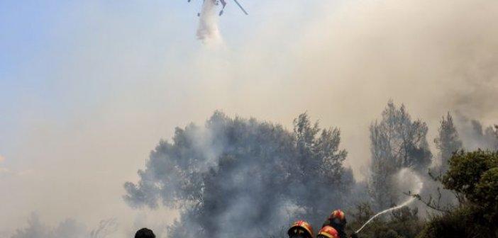 Δυτική Ελλάδα: Μεγάλη φωτιά στην Ηλεία