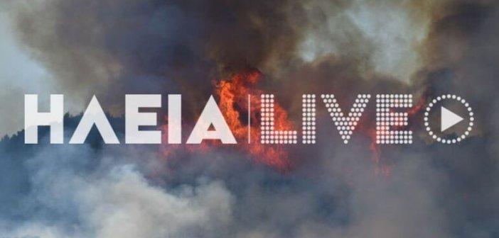 Ηλεία: Μαίνεται ο πύρινος εφιάλτης- Σε ασφαλές σημείο του χωριού για προληπτικούς λόγους οι κάτοικοι του Χελιδονίου (ΦΩΤΟ)