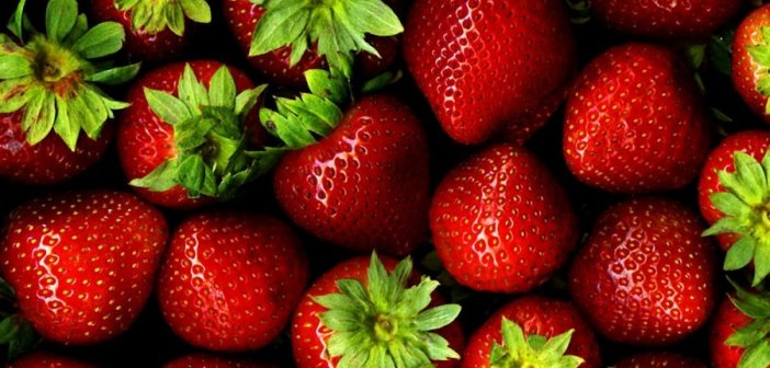 Περιφέρεια Δυτικής Ελλάδας: Αίτημα ενίσχυσης για την προώθηση της φράουλας στις αγορές της Γερμανίας και της Πολωνίας