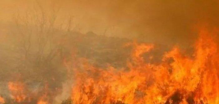 Φωτιά στο Καρπενήσι- Στο σημείο επιχειρούν 23 πυροσβέστες