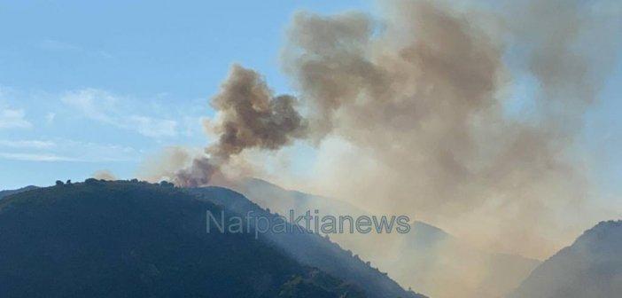 Μεγάλη φωτιά στο Τρίκορφο Ναυπακτίας – Δείτε πρώτες εικόνες από το σημείο