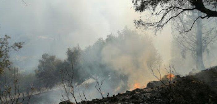 Λήξη συναγερμού για την φωτιά στην Άνω Κανδήλα (ΔΕΙΤΕ ΦΩΤΟ)