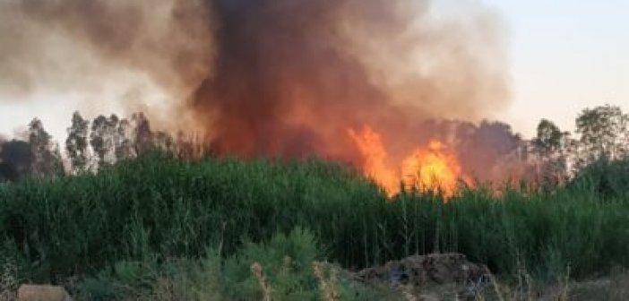 Μια ακόμη πυρκαγιά δίπλα στον καταυλισμό των ΡΟΜΑ στο Μεσολόγγι (ΔΕΙΤΕ ΦΩΤΟ)