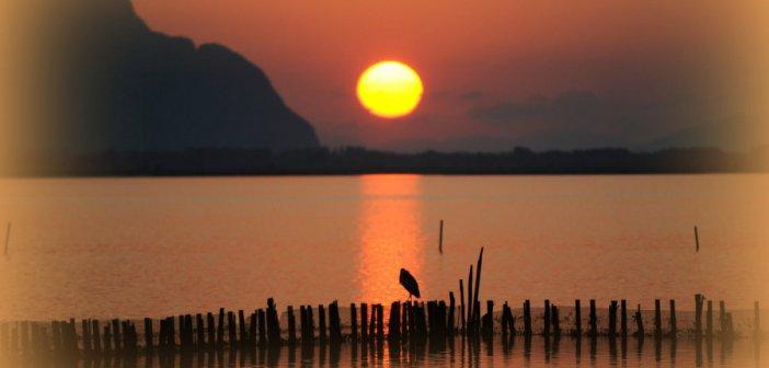 Ανατολή στη λιμνοθάλασσα Μεσολογγίου(ΦΩΤΟ)