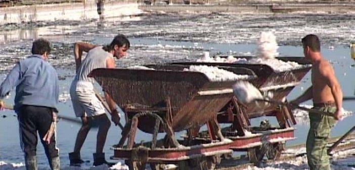 Αλυκές Μεσολογγίου: Η συλλογή άλατος με το τραινάκι (ΦΩΤΟ)