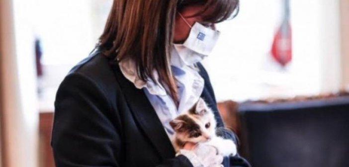 Η Κατερίνα Σακελλαροπούλου υιοθέτησε αδέσποτο γατάκι από την Κάρπαθο