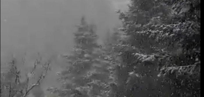 To…στρώνει στο Λαμπίρι Αιτωλοακαρνανίας (video)