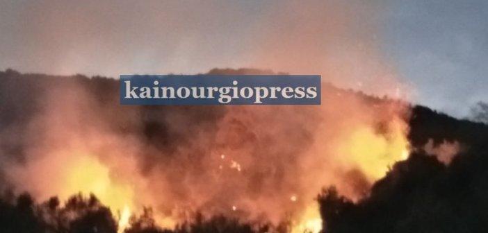 Πυρκαγιά σε δασική έκταση κοντά σε σπίτια στο Βλοχό (φωτο)