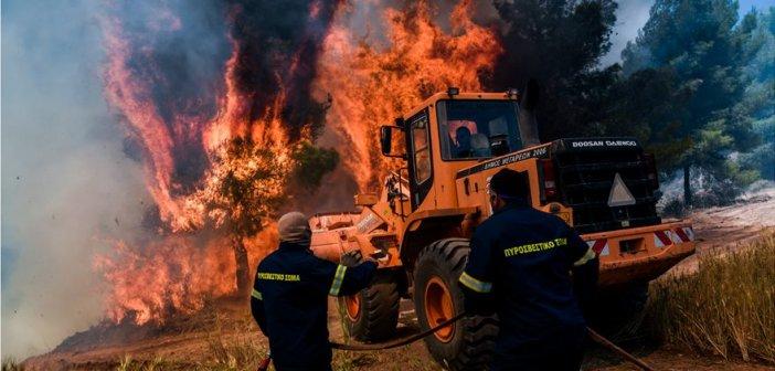Φωτιά σε Κορινθία – Μέγαρα: Μάχη με τις αναζωπυρώσεις στο Αλεποχώρι – Διάσπαρτες εστίες σε πολλά σημεία