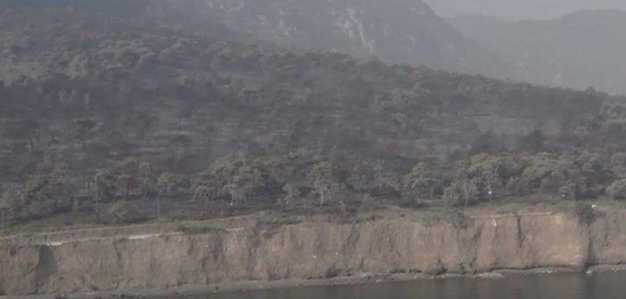 Φωτιά στον Σχίνο: Βίντεο από drone μετα την περιβαλλοντική καταστροφή