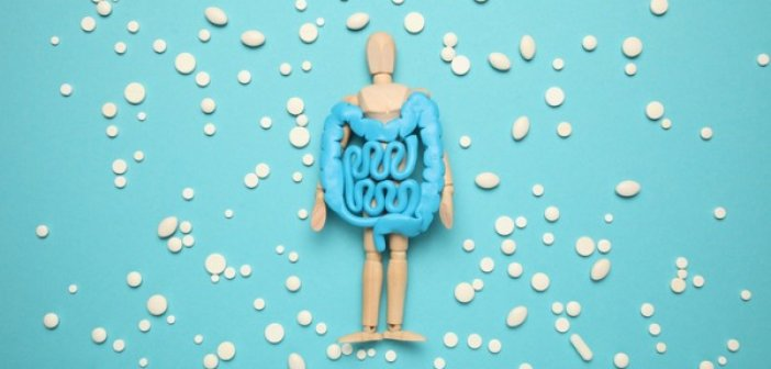 Ψηφιακή ημερίδα με τίτλο «Η ζωή με Φλεγμονώδεις Νόσους του Εντέρου»