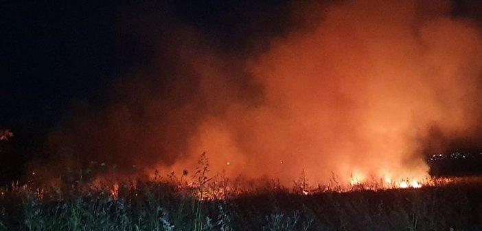 Αγρίνιο: Φωτιά έχει ξεσπάσει στα Αϊ Βασιλιώτικα (εικόνες – βίντεο)