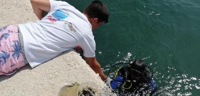 Βόνιτσα: Καταδυτική ομάδα και άλλοι εθελοντές σε υποθαλάσσια και παράκτια δράση καθαρισμού