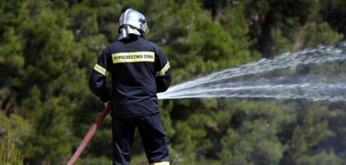 Λαϊκή Συσπείρωση: Να γίνουν ενέργειες αντιπυρικής προστασίας στο Δήμο Αγρινίου
