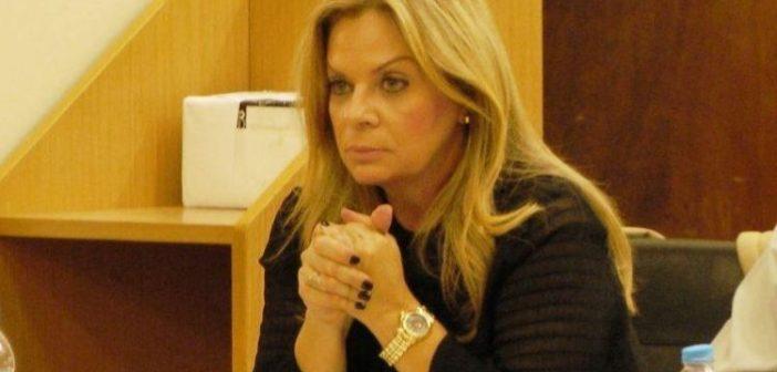 """Σταρακά: «Η παραίτηση Γκούντα δείχνει προβληματική διοίκηση"""" – """"Οι ευθύνες είναι πολιτικές»"""