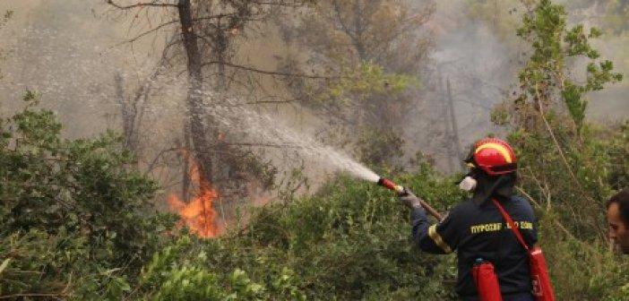 Φωτιά – Έξι εστίες πυρκαγιάς στην ευρύτερη περιοχή της Μάνδρας και στο Πόρτο Γερμενό
