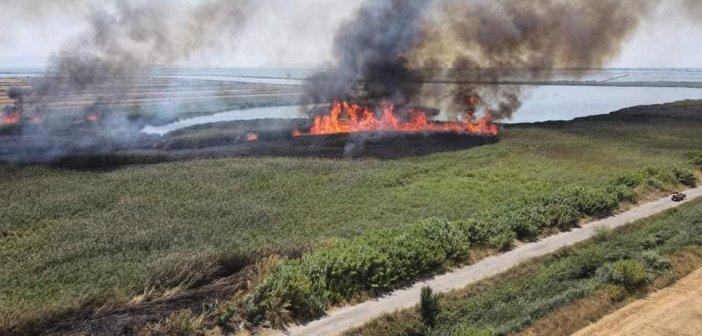 Φωτιά -Μεσολόγγι: Έγκαιρη η παρέμβαση στο κτήμα Πόλντερ