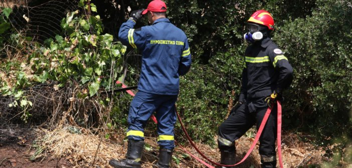 Φωτιά στο Ροδοτόπι Ιωαννίνων κοντά σε πτηνοτροφικές μονάδες