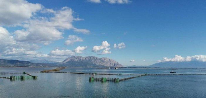 Ελληνική Λύση στη Βουλή: «Μείωση της ιχθυοκαλλιέργειας στη λιμνοθάλασσα Αιτωλικού Μεσολογγίου, ευτροφισμός αυτής και απειλή ερήμωσης της περιοχής»